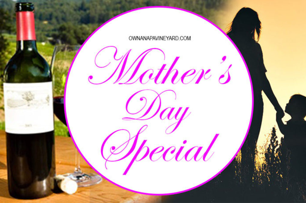 Mother's Day Special: Own a Napa Vineyard