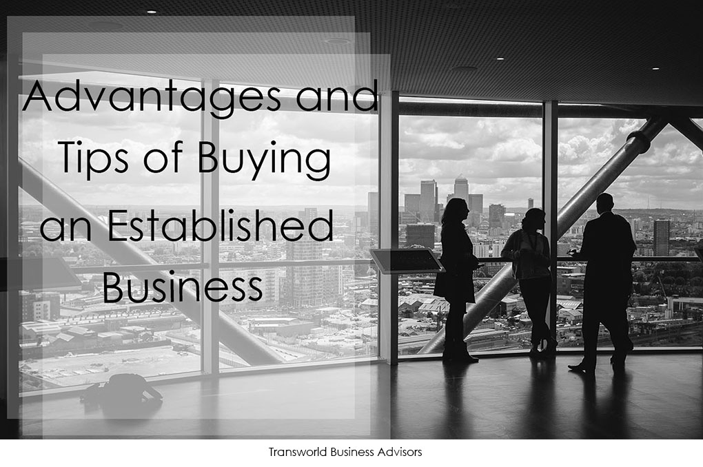 Read more about the article Advantages and tips of buying an established business 