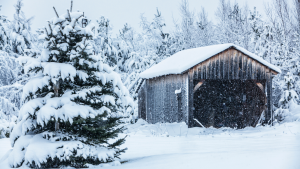 Yes, Winter Can Damage Your Garage Doors