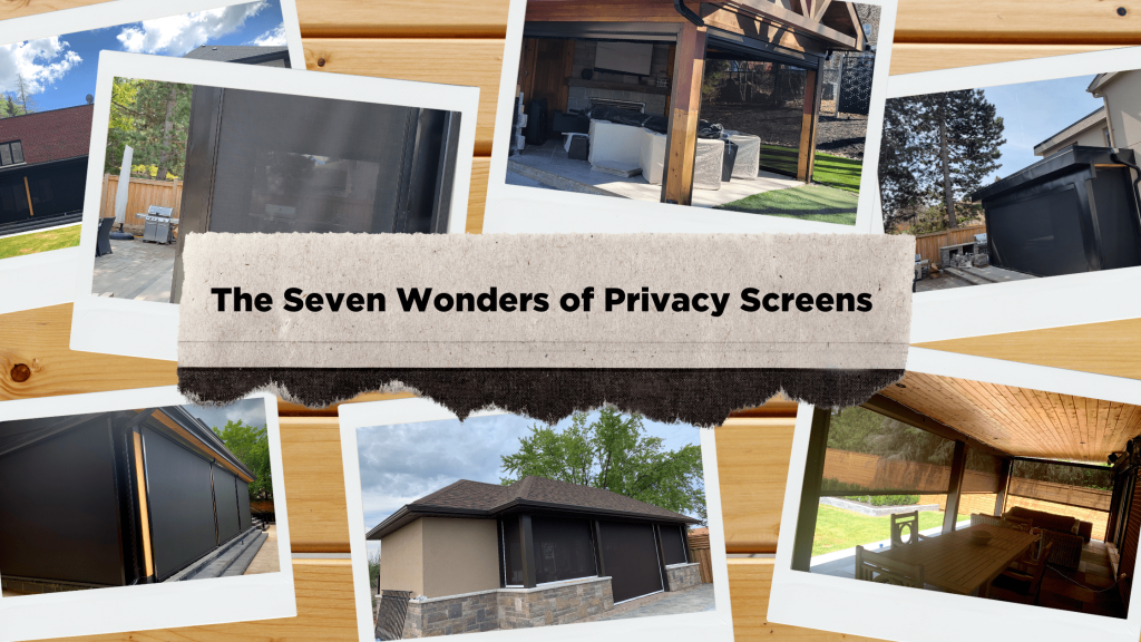 Read more about the article The Seven Wonders of Privacy Screens